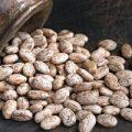 قیمت عمده لوبیا چیتی صادراتی ایرانی