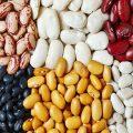 قیمت عمده انواع لوبیا صادراتی ایرانی