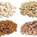 قیمت خرید عمده  حبوبات با کیفیت خمین